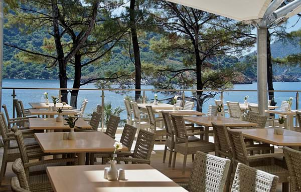 where to buy restaurant chairs in canada national event supply